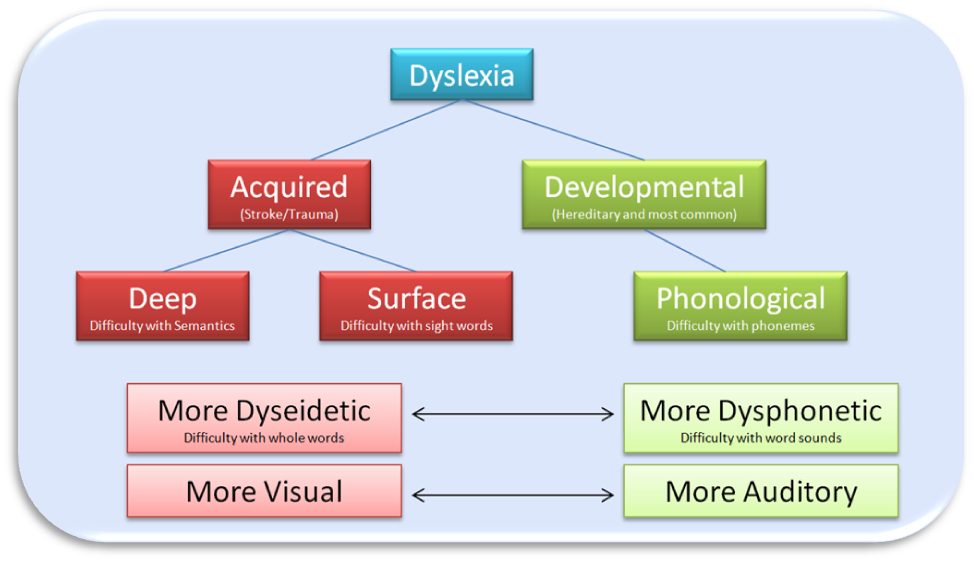 dyslexia phonological deficit In recent years, limitations of the discrepancy definition of specific reading difficulties have led researchers to propose that dyslexia is best described as a core phonological deficit with studies of the normal development of reading as a backdrop, this paper reviews the phonological processing .
