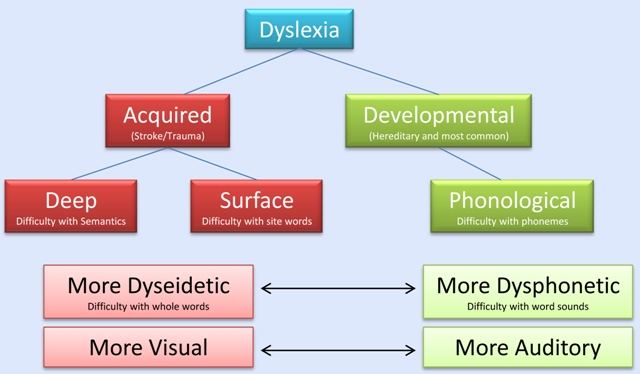 a study of acquired dyslexia and deep dyslexia An analysis of writing in a case of deep dyslexia  a fairly well-known form of acquired dyslexia,  was 57 years old at the time this study was.